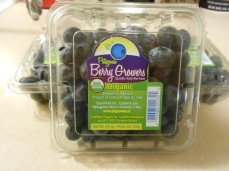PATAGONIA BERRY GROWERS BLUEBERRIES