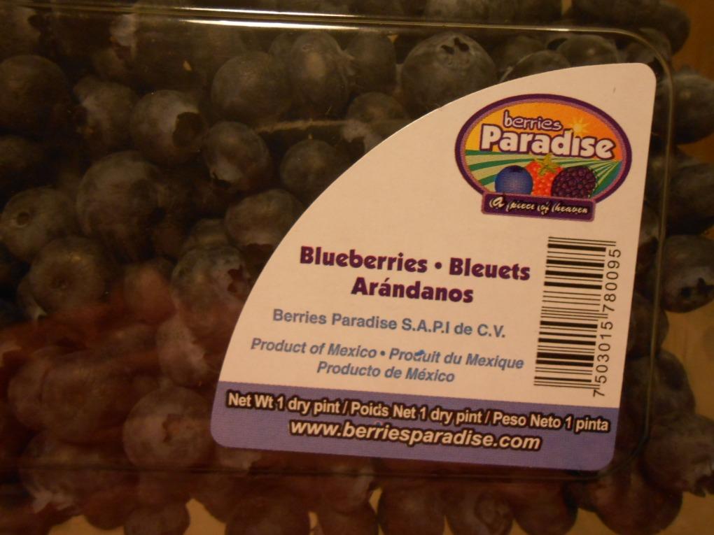 FRESH BLUEBERRIES - BERRIES PARADISE