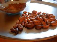 COCOA BEANS - CACAO BEANS