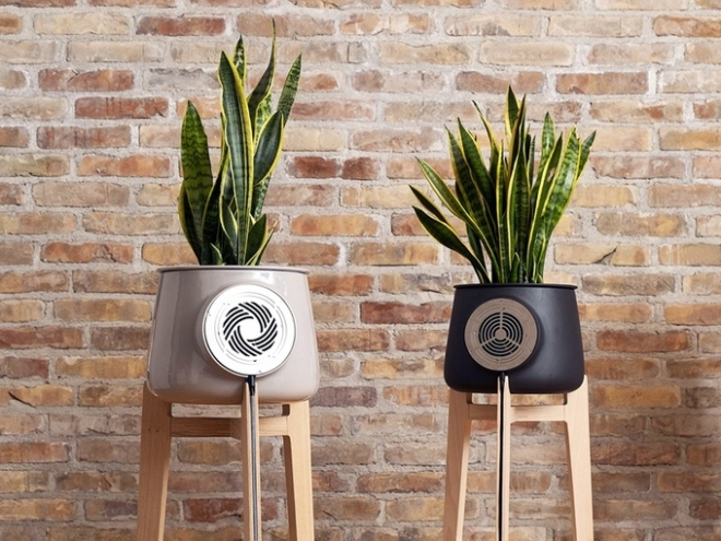 Clairy-Plant-Powered-Air-Purifier-1