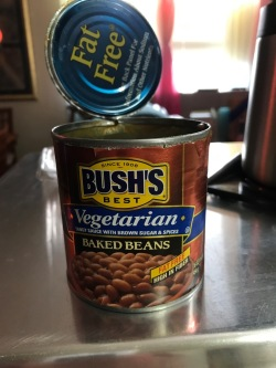 BUSH'S FAT FREE VEGETARIAN BAKED BEANS