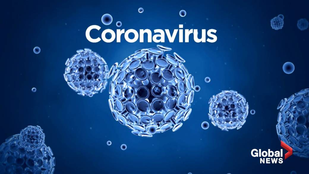 Coronavirus imported from Europe found in frozen food and on chopping boards